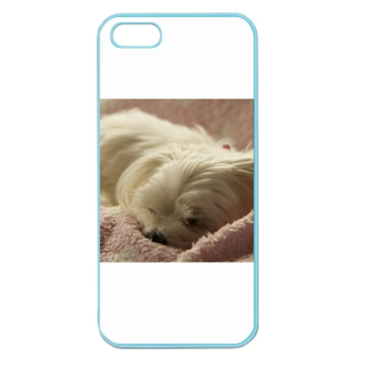 Maltese Sleeping Apple Seamless iPhone 5 Case (Color)