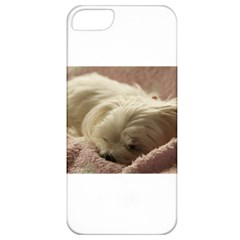 Maltese Sleeping Apple iPhone 5 Classic Hardshell Case