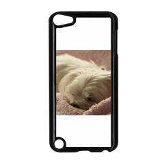 Maltese Sleeping Apple iPod Touch 5 Case (Black)