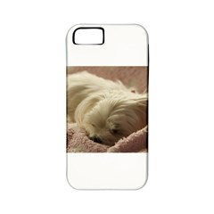 Maltese Sleeping Apple iPhone 5 Classic Hardshell Case (PC+Silicone)