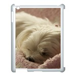 Maltese Sleeping Apple iPad 3/4 Case (White) Front