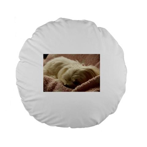 Maltese Sleeping Standard 15  Premium Round Cushions