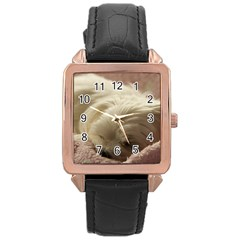Maltese Sleeping Rose Gold Leather Watch