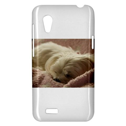 Maltese Sleeping HTC Desire VT (T328T) Hardshell Case