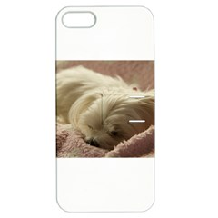 Maltese Sleeping Apple iPhone 5 Hardshell Case with Stand