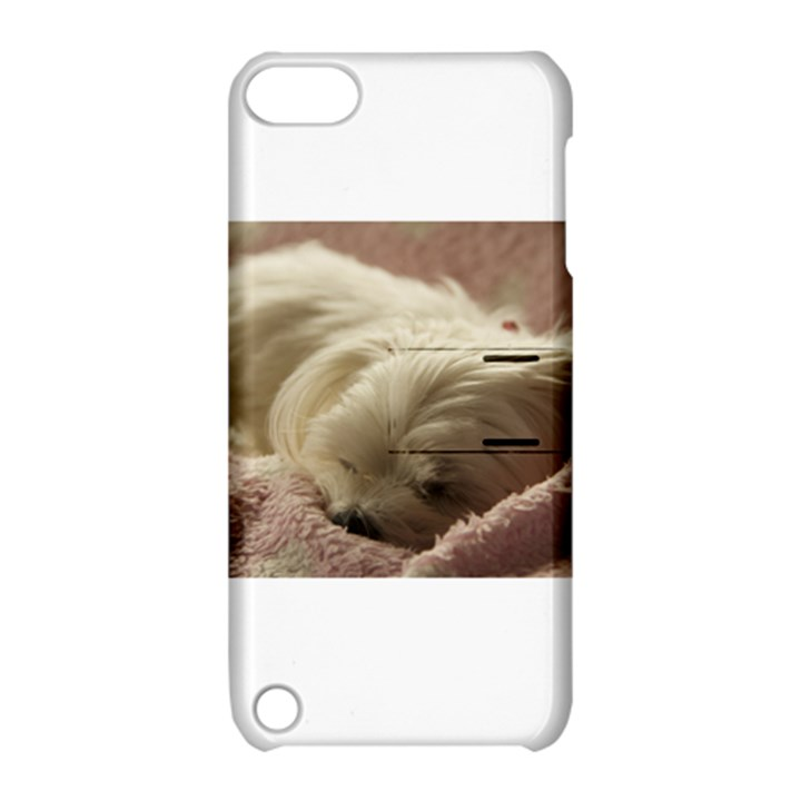 Maltese Sleeping Apple iPod Touch 5 Hardshell Case with Stand