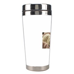 Maltese Sleeping Stainless Steel Travel Tumblers