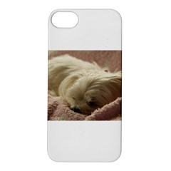 Maltese Sleeping Apple iPhone 5S/ SE Hardshell Case