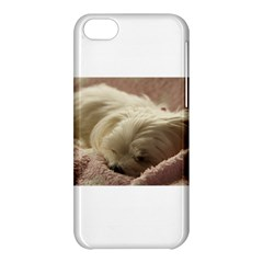 Maltese Sleeping Apple iPhone 5C Hardshell Case