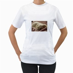 Maltese Sleeping Women s T Shirt (white)