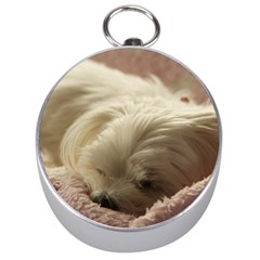 Maltese Sleeping Silver Compasses