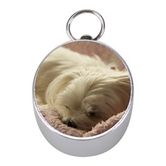 Maltese Sleeping Mini Silver Compasses