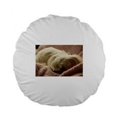 Maltese Sleeping Standard 15  Premium Flano Round Cushions