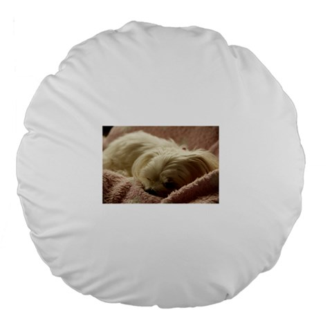 Maltese Sleeping Large 18  Premium Flano Round Cushions