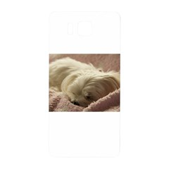 Maltese Sleeping Samsung Galaxy Alpha Hardshell Back Case