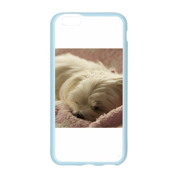Maltese Sleeping Apple Seamless iPhone 6/6S Case (Color)
