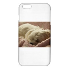 Maltese Sleeping iPhone 6 Plus/6S Plus TPU Case