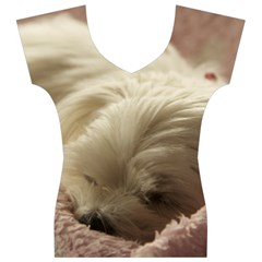Maltese Sleeping Women s V-Neck Cap Sleeve Top