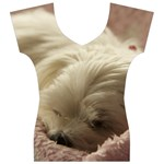 Maltese Sleeping Women s V-Neck Cap Sleeve Top Front