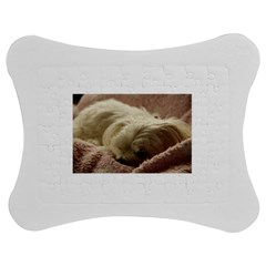 Maltese Sleeping Jigsaw Puzzle Photo Stand (Bow)