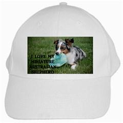 Blue Merle Miniature American Shepherd Love W Pic White Cap