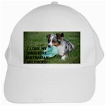 Blue Merle Miniature American Shepherd Love W Pic White Cap Front