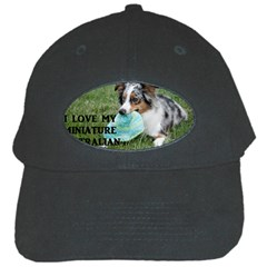 Blue Merle Miniature American Shepherd Love W Pic Black Cap