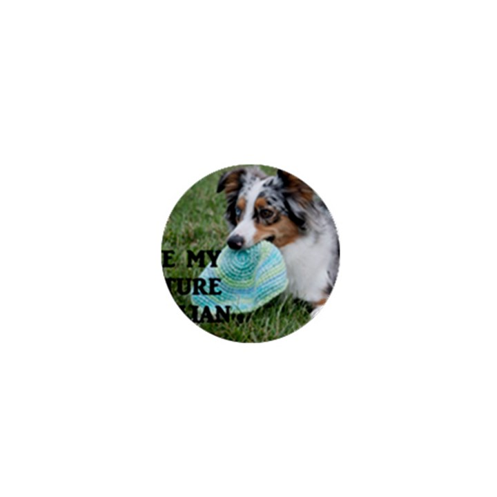 Blue Merle Miniature American Shepherd Love W Pic 1  Mini Magnets