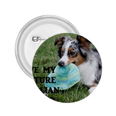Blue Merle Miniature American Shepherd Love W Pic 2.25  Buttons
