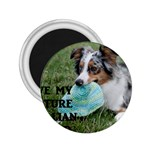 Blue Merle Miniature American Shepherd Love W Pic 2.25  Magnets Front