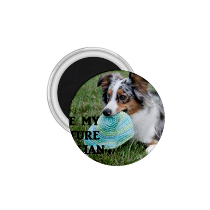 Blue Merle Miniature American Shepherd Love W Pic 1.75  Magnets