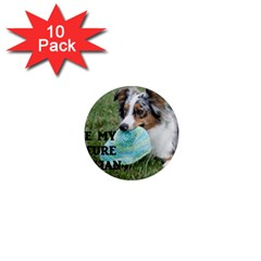 Blue Merle Miniature American Shepherd Love W Pic 1  Mini Magnet (10 pack)