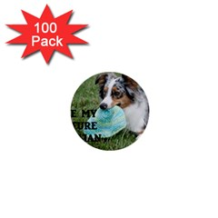 Blue Merle Miniature American Shepherd Love W Pic 1  Mini Buttons (100 pack)