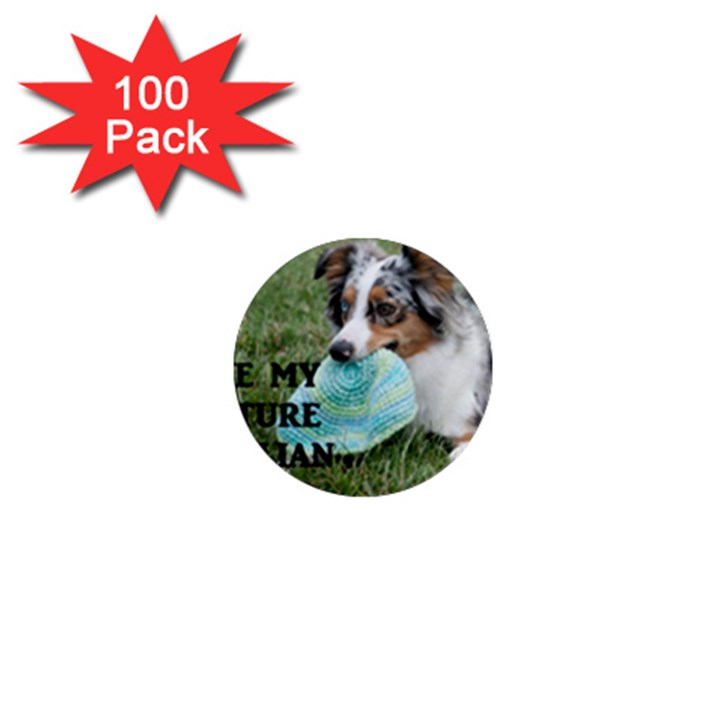 Blue Merle Miniature American Shepherd Love W Pic 1  Mini Magnets (100 pack)