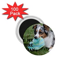 Blue Merle Miniature American Shepherd Love W Pic 1.75  Magnets (100 pack)
