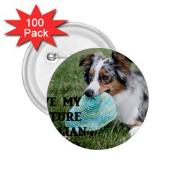 Blue Merle Miniature American Shepherd Love W Pic 2.25  Buttons (100 pack)