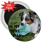 Blue Merle Miniature American Shepherd Love W Pic 3  Magnets (100 pack) Front