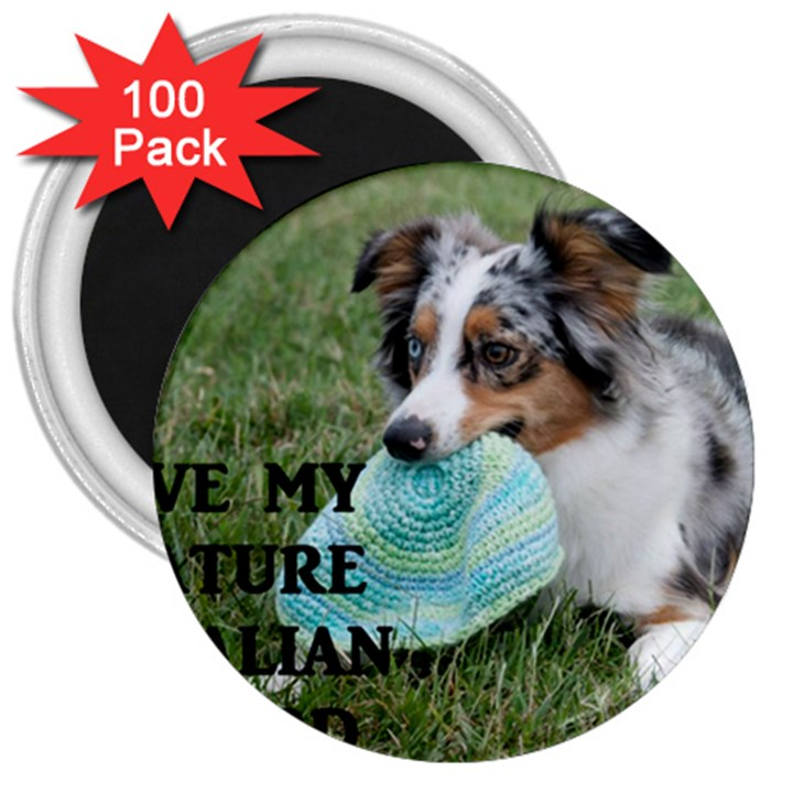 Blue Merle Miniature American Shepherd Love W Pic 3  Magnets (100 pack)