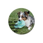 Blue Merle Miniature American Shepherd Love W Pic Magnet 3  (Round) Front