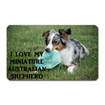 Blue Merle Miniature American Shepherd Love W Pic Magnet (Rectangular) Front