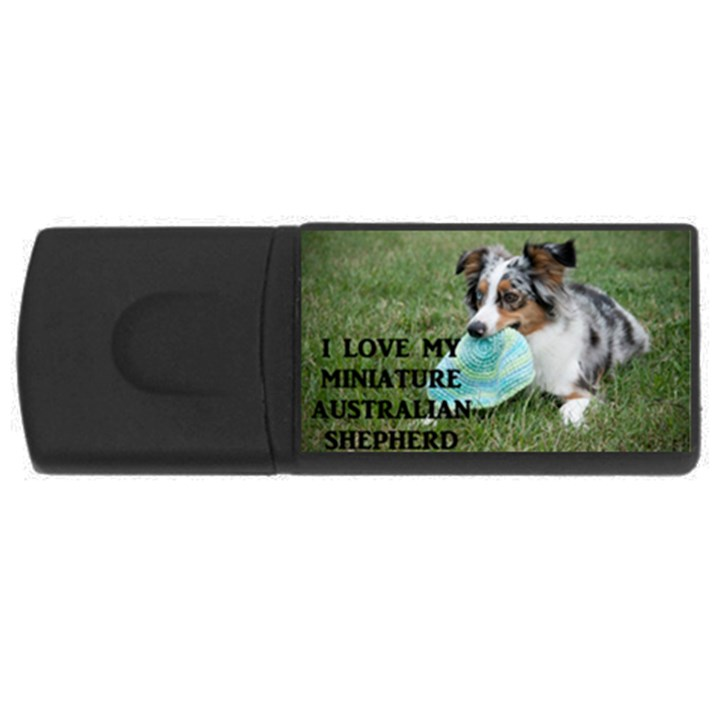 Blue Merle Miniature American Shepherd Love W Pic USB Flash Drive Rectangular (2 GB)