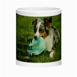 Blue Merle Miniature American Shepherd Love W Pic Night Luminous Mugs Center