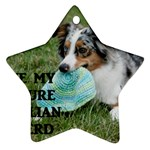 Blue Merle Miniature American Shepherd Love W Pic Star Ornament (Two Sides)  Back