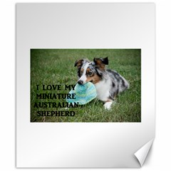 Blue Merle Miniature American Shepherd Love W Pic Canvas 8  x 10