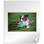 Blue Merle Miniature American Shepherd Love W Pic Canvas 8  x 10  10.02 x8 Canvas - 1