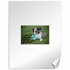 Blue Merle Miniature American Shepherd Love W Pic Canvas 12  x 16