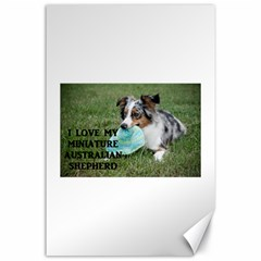Blue Merle Miniature American Shepherd Love W Pic Canvas 24  x 36