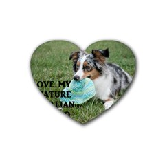 Blue Merle Miniature American Shepherd Love W Pic Heart Coaster (4 pack)