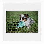 Blue Merle Miniature American Shepherd Love W Pic Medium Glasses Cloth (2-Side) Back