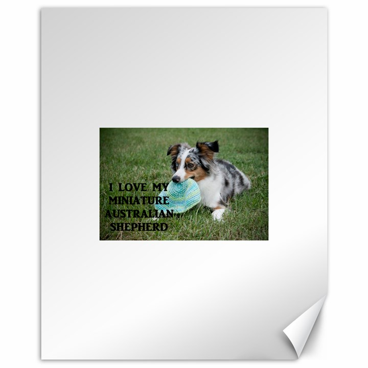Blue Merle Miniature American Shepherd Love W Pic Canvas 11  x 14